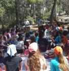 הפעלת ילדים ביערות הכרמל